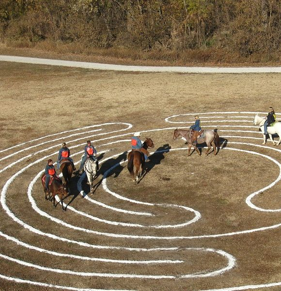Horses walking a New Harmony labyrinth